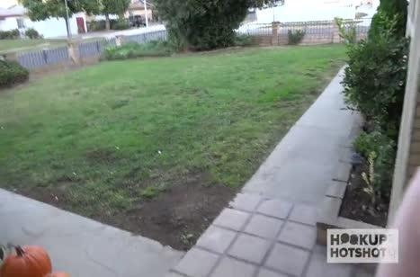 Хардкорное порно видео с любительницами разврата №4598